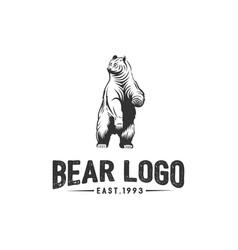 bear logo logotype vector image