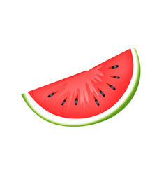 Fresh juicy watermelon slice isolated vector