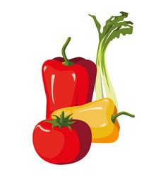 Fresh vegetables red and yellow pepper tomato vector