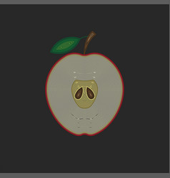 half a red apple with a leaf a cross-section vector image