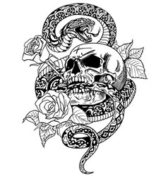snake skull roses black and white tattoo vector image
