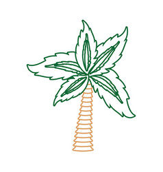 palm tree symbol neon lines vector image vector image
