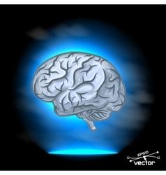 Brain imagination vector image vector image