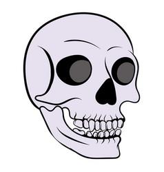 human skull icon icon cartoon vector image vector image