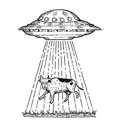 ufo kidnaps the cow engraving style vector image