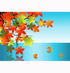 Autumn leaf reflection in water vector image
