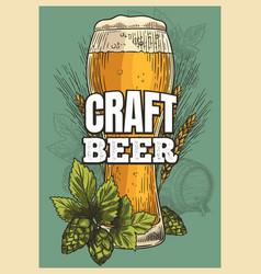 beer poster beer glass hop barley vintage style vector image
