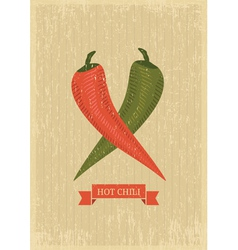 hot chili poster vector image