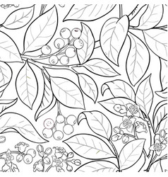 sandalwood pattern vector image