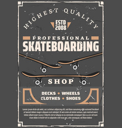 skateboards decks and wheels skateboarding sport vector image