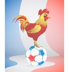 Football with France symbol red Rooster vector image vector image
