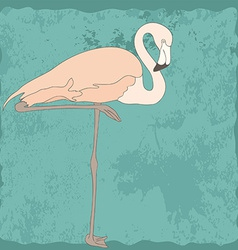 FlamingoStand8 vector image vector image