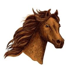 Arabian beautiful brown horse head vector