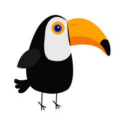 cute toucan toco beautiful exotic tropical bird vector image