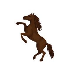 Gorgeous horse rearing up domestic animal with vector