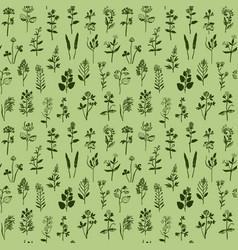 Herbal seamless pattern vector
