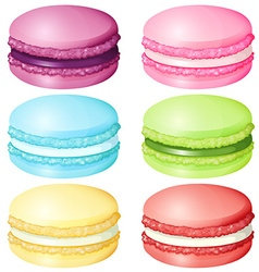 Macaron in different flavor vector