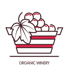 organic winery promotional poster with basket full vector image vector image