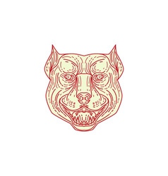 Pitbull Dog Mongrel Head Mono Line vector image vector image