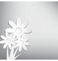 abstract spring background with white flower vector image