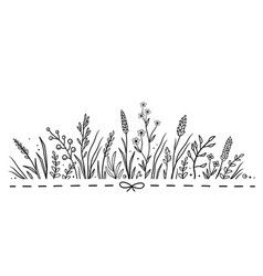 Background with hand drawn herbs and flowers vector