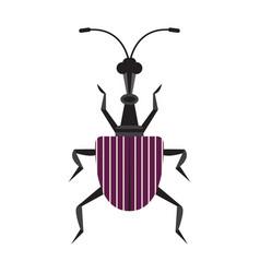 Giraffe weevil bug icon in flat design vector