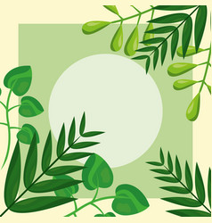 green foliage forest tropical leaves template vector image