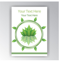 green white beautiful cover circle label flayer vector image