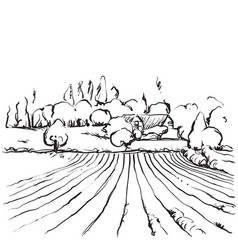 Hand drawn of a fields vector