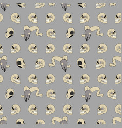 human animal skull pattern vector image