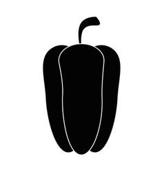 Pepper fresh vegetable vector