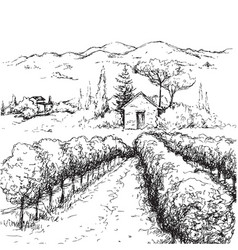 Rural scene with houses vineyard and hills sketch vector