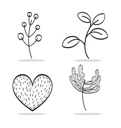 set natural plants with leaves and heart vector image