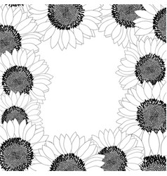 Sunflower border outline vector