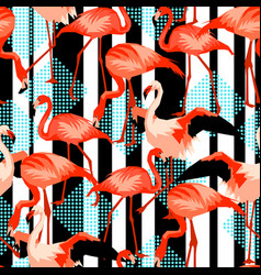 seamless pattern with flamingo tropical bright vector image