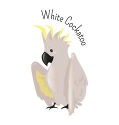 Exotic white cockatoo Bird isolated vector