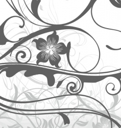 Floral vector