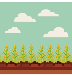 fresh farm design vector image