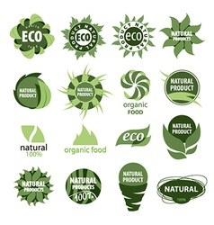 icons of natural products vector image