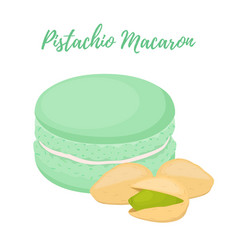 Pistachio macaron with meringue cream vector