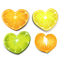 Citrus heart shape vector