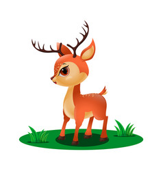 cute little deer in grass vector image