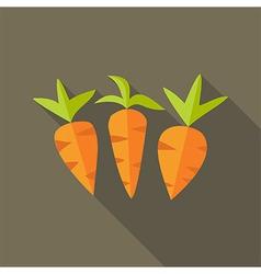 Natural spring carrots vector