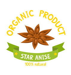 Organic badge star anise with ribbon isolated vector