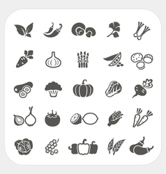 Vegetable icons set vector