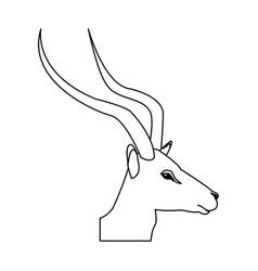 head impala africa mammal wild vector image