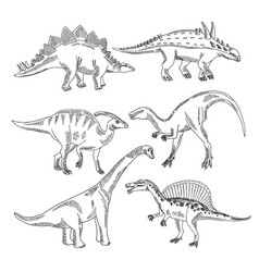 stegosaurus triceratops tyrannosaurus and other vector image