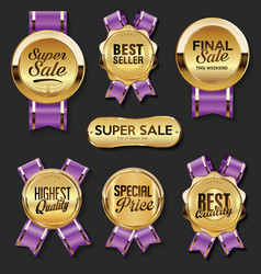 a collection various badges and labels 9906 vector image