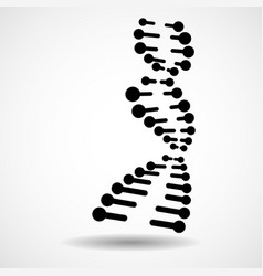 abstract spiral of dna stylish molecule vector image