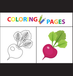 coloring book page sketch outline and color vector image
